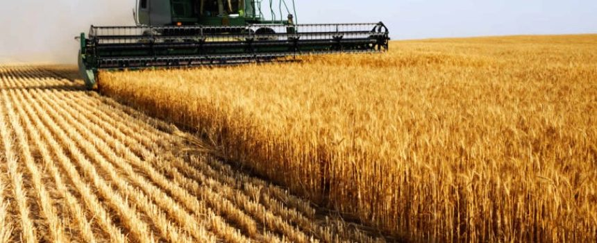 страхование урожая